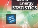 2013. Todos los datos claves de energía a mano