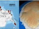 La geotermia acelera más el deshielo de la Antártida que la actividad humana